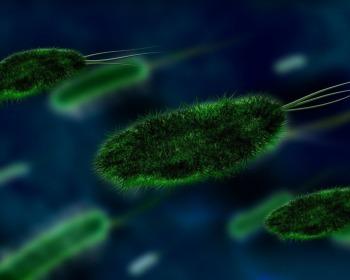 Abiogênese e biogênese
