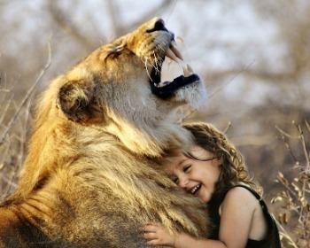 Animais silvestres e animais domésticos