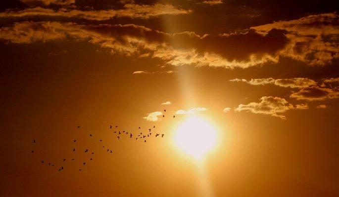 Calor do Sol