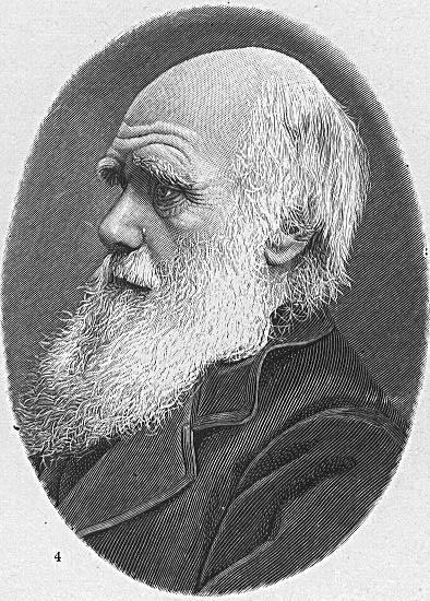 O naturalista britânico Charles Darwin, criador da teoria da seleção natural