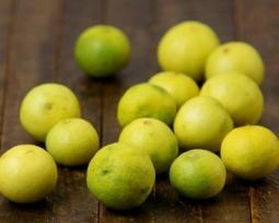 Tipos de limão
